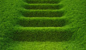 Vorgehensweise von OPUS Marketing in der Grünen Branche