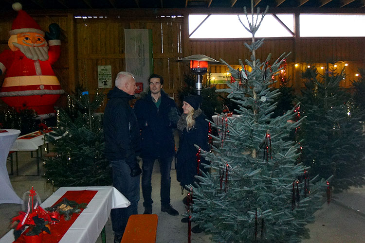 OPUS-Marketing-News-Lamettafest-Weihnachtsbaum