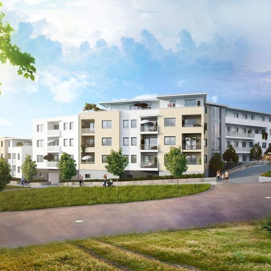 projekte-erfolgsgeschichte-projekt-bauart-costbar-coburg-teaser-klein-opus-marketing