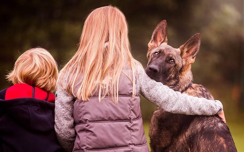 Die Kinder von Familie Stichnoth mit einem Familienschutzhund | digitale Strategie von OPUS Marketing