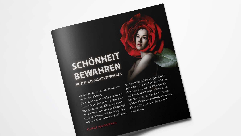 OPUS Marketing / Projekte / 1A Blumen / Glycerinrosen