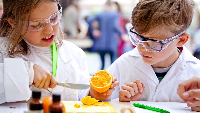 OPUS Marketing / Projekte / Ernährung / Bayerische Ernährungstage / Erlebnistag Kinder lernen