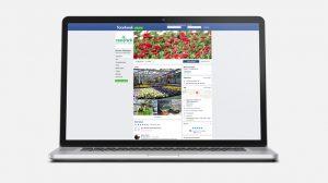 OPUS Marketing / Projekte / Blumen Rombach / Social Media / Facebook
