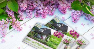 OPUS Marketing / Projekte / Blumen Rombach