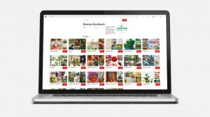 OPUS Marketing / Projekte / Blumen Rombach / Social Media Pinterest