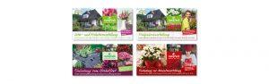 OPUS Marketing / Projekte / Blumen Rombach / Postkarten